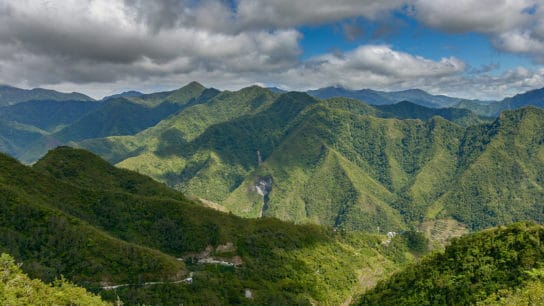 Forest Loss in Mountains of Southeast Asia Accelerates at 'Shocking' Pace