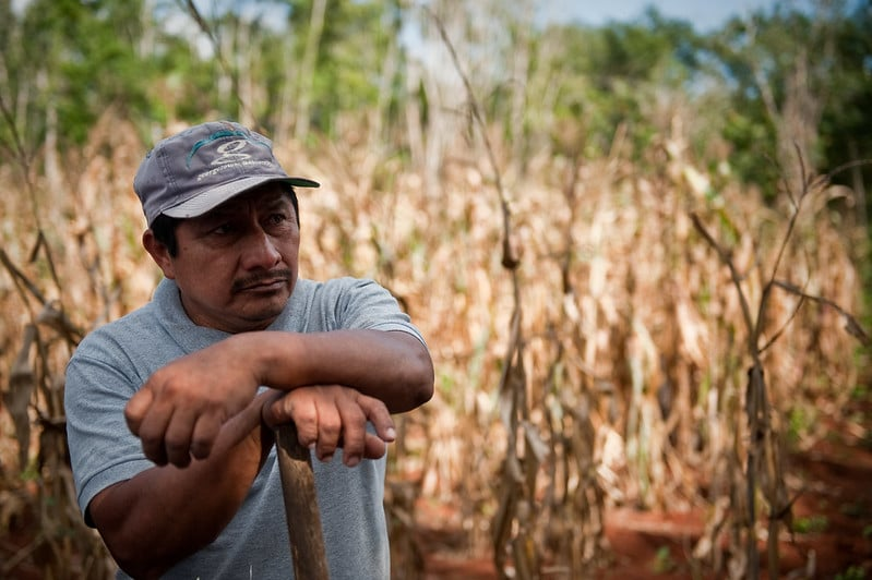 5 Reasons Why Conservation Efforts Need to Support Community Livelihoods in the Decade Ahead
