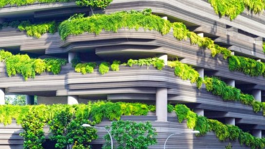 How Can Cities Be Greener in a Global Warming World?