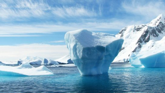 As Arctic Sea Ice Melt Sets Early July Record, Hard Times Lie Ahead for Ice: Studies