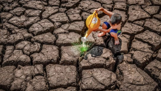 """IPCC Report May Be A """"Code Red for Humanity,"""" But We Still Have Choices to Make"""