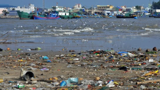 What are the Causes of Water Pollution?