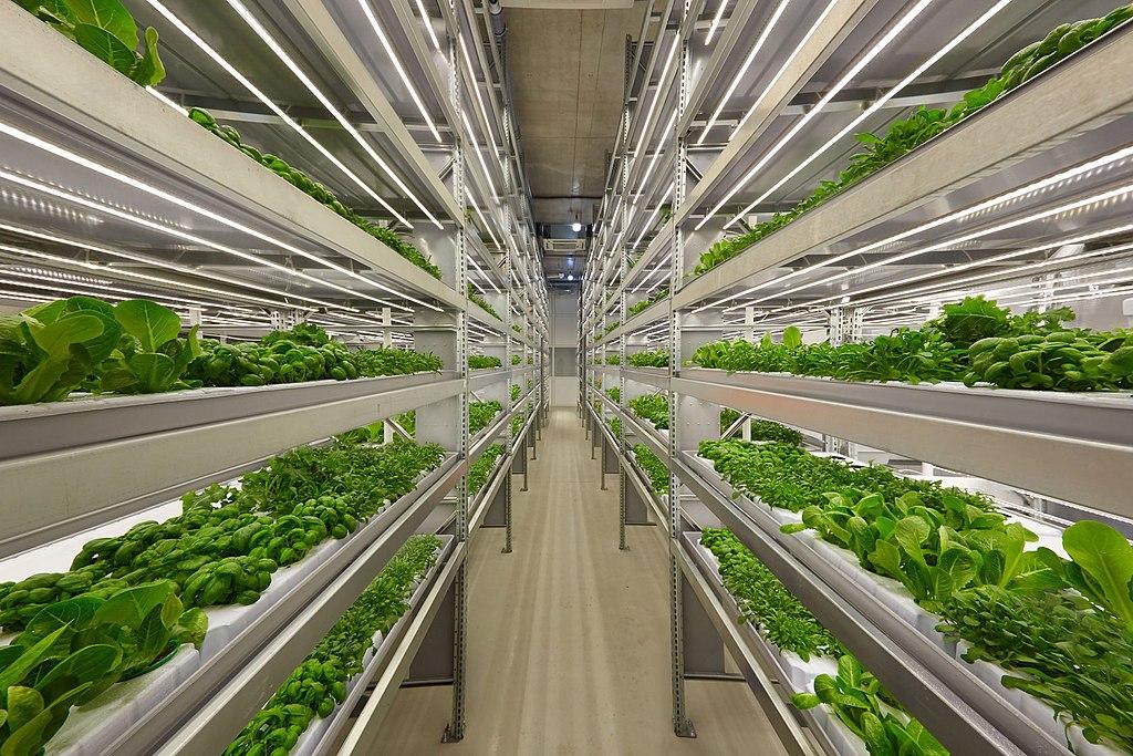 vertical farming, green tech