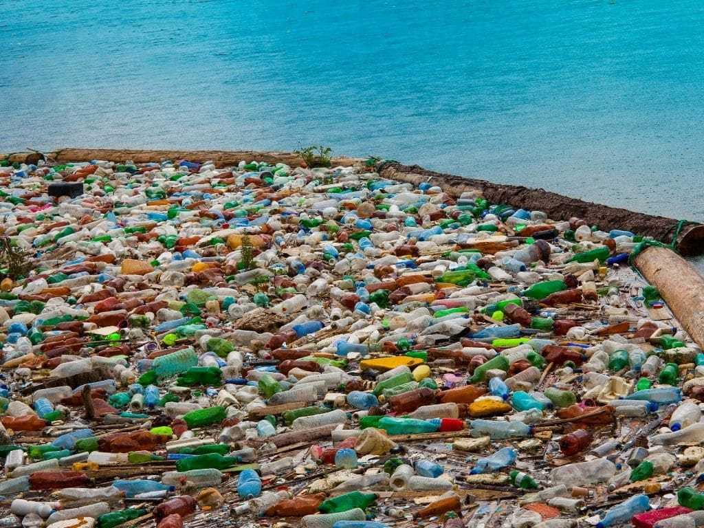 What is the Great Garbage Patch?