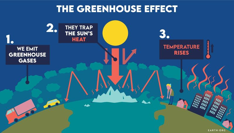 global warming climate change infographic