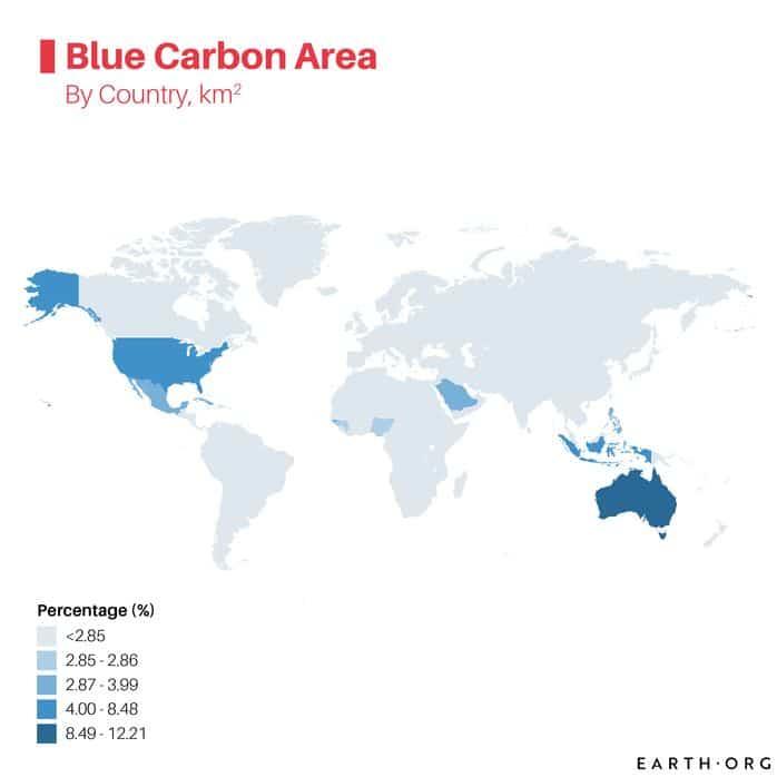 blue carbon map carbon sinks